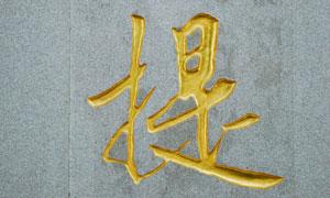 墙壁上的立体烫金字高清摄影图片