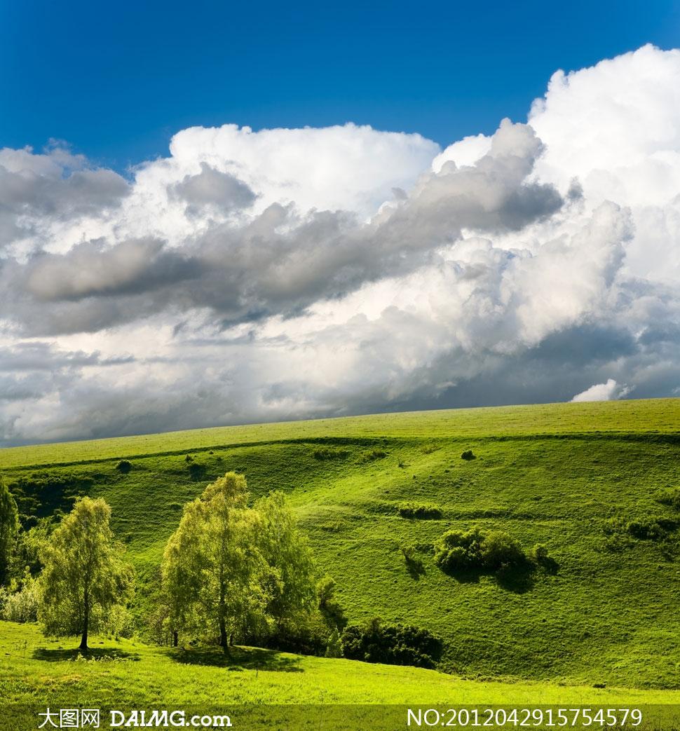 蓝天白云与青青草原高清摄影图片