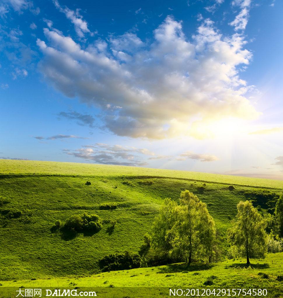 高清大图图片素材摄影蓝天白云云层云彩多云天空云团山坡大树树木
