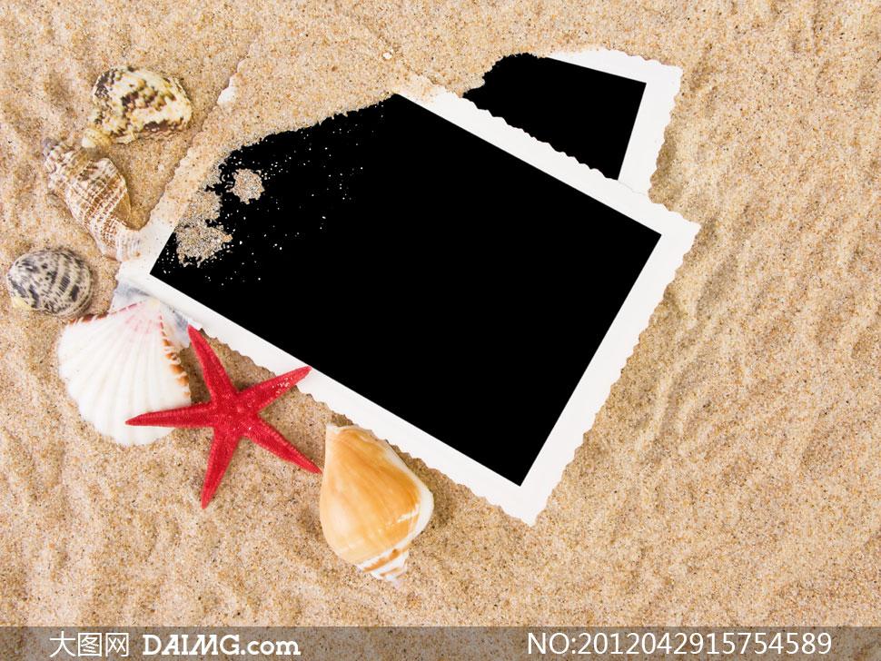 沙滩上的相片贝壳摄影高清图片