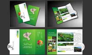 绿色风格折页设计矢量素材
