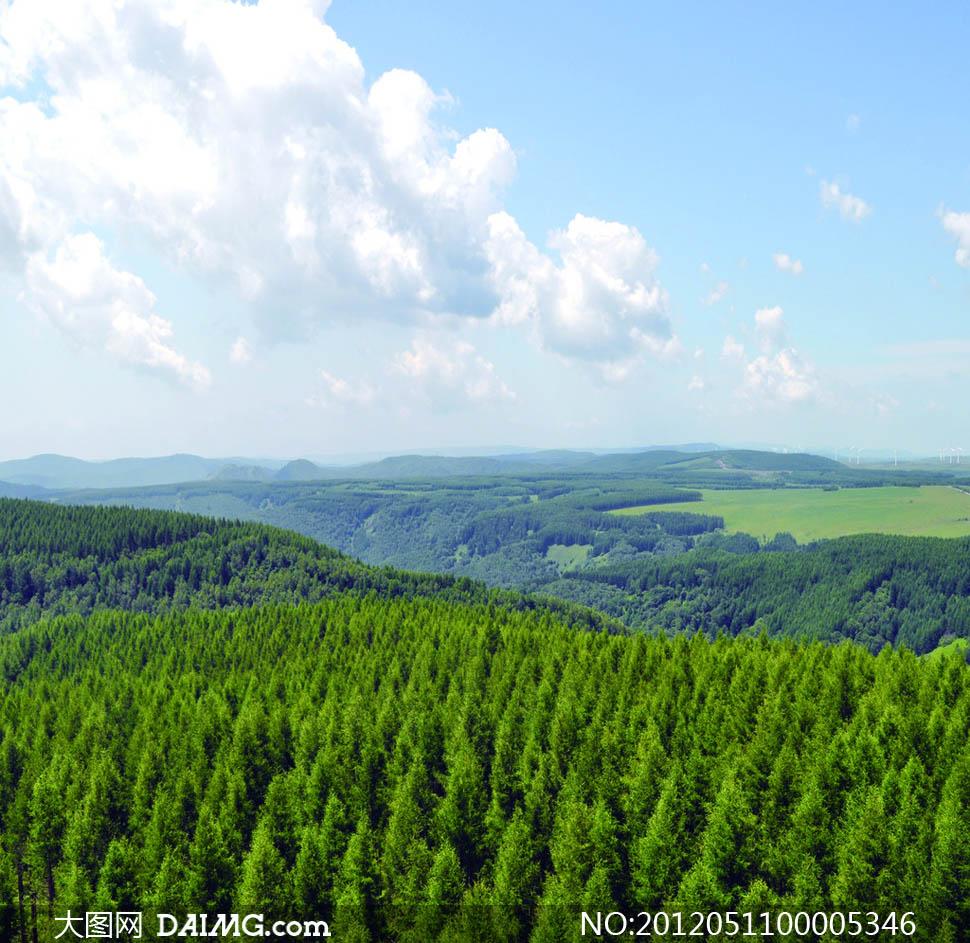大图首页 高清图片 自然风景 > 素材信息          蓝天云彩下的森林