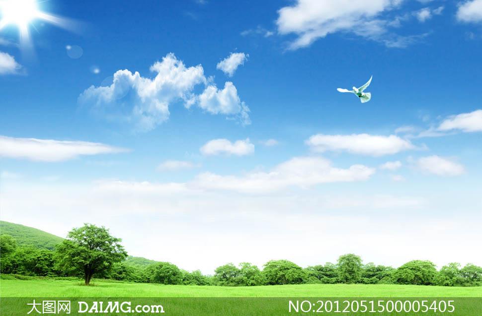 蓝天白云下的草地和树林psd分层素材图片