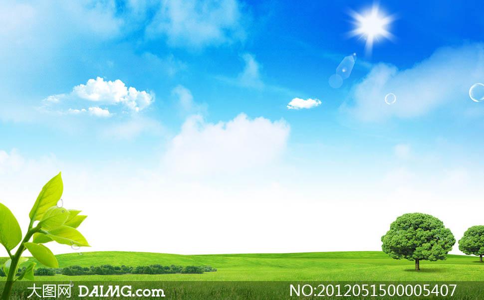 蓝天天空白云云朵云彩太阳阳光光线四射光晕大树树木