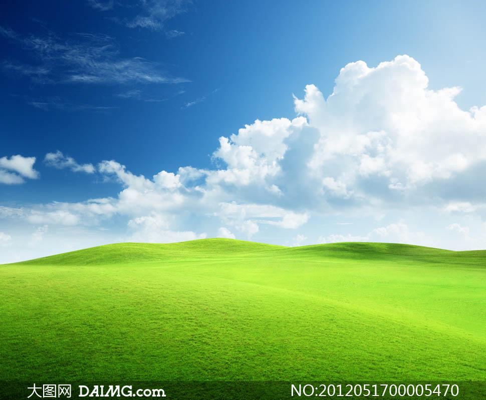 大图首页 高清图片 自然风景 > 素材信息          蓝天白云油菜地