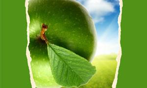 青苹果与绿色撕纸背景高清图片