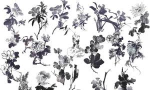 中国风水墨花朵设计PSD分层素材