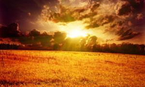 云层中透射的阳光与草地高清摄影图片