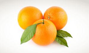 3个新鲜橙子特写摄影高清图片