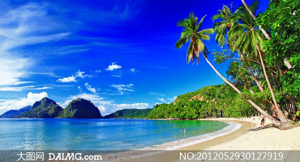 海邊椰樹攝影圖 海邊 自然風景; 藍天白云夏天大海椰樹攝影高清; 椰樹