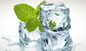 融化成水的冰块与薄荷叶摄影高清图片