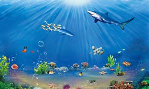 光线下的海底世界PSD分层素材