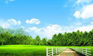 蓝天白云下的草地和小路PSD分层素材