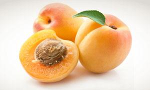 新鲜可口的杏子特写摄影高清图片