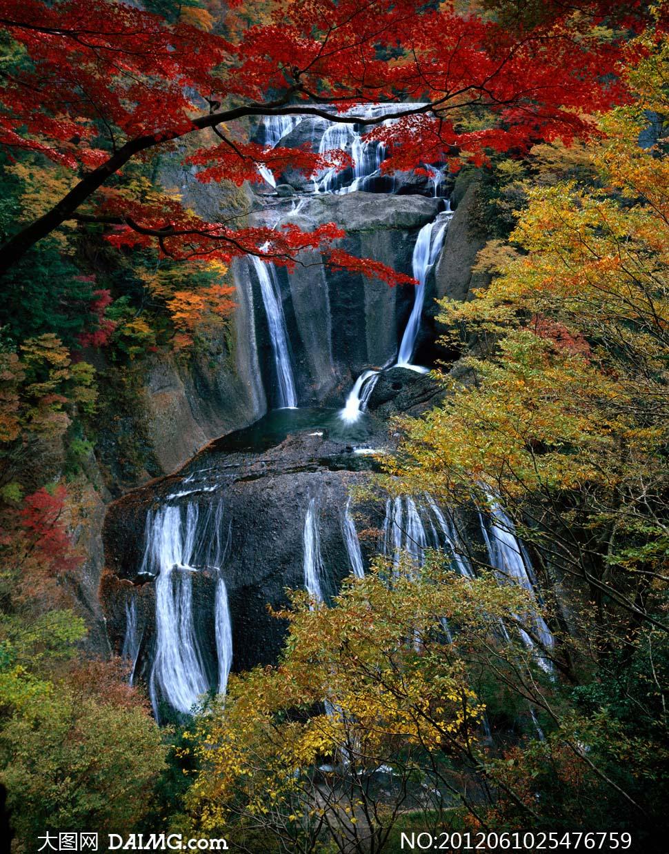 小溪流水风景,流水,水流,溪流,河流,高清图片,免费下载 - 绘艺素材