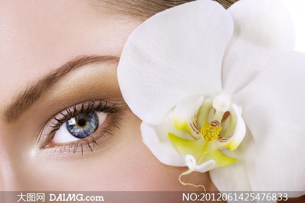 高清图片 美女图片 > 素材信息          浓密睫毛眼睛特写摄影高清