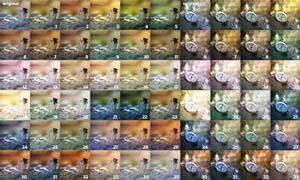 75款静物照片柔美单色系调色动作