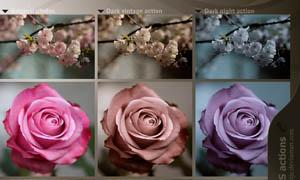 静物照片老照片效果和青色效果调色动作
