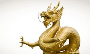 张牙舞爪的金龙雕像摄影高清图片