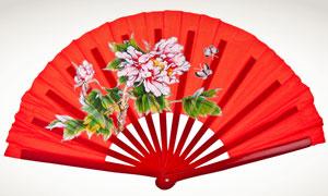 印有富贵牡丹花的扇子摄影高清图片