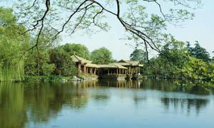 夏季公园自然景观摄影图片