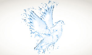 液态水组成的鸽子图案创意高清图片
