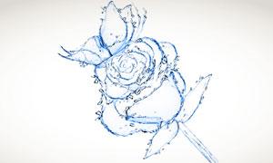 液态水组成的花朵图案创意高清图片