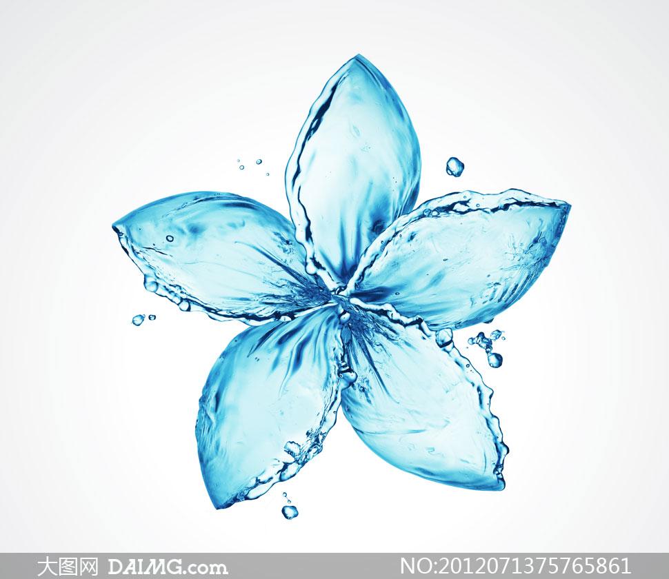 液态水组成的花瓣图案创意高清图片 - 大图网设计素材图片