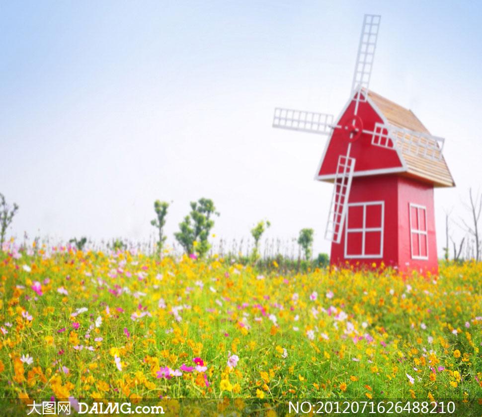 草地草丛杂草风车房子房屋木屋韩风春暖花开红色花海