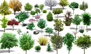 绿色树木效果图设计PSD分层素材