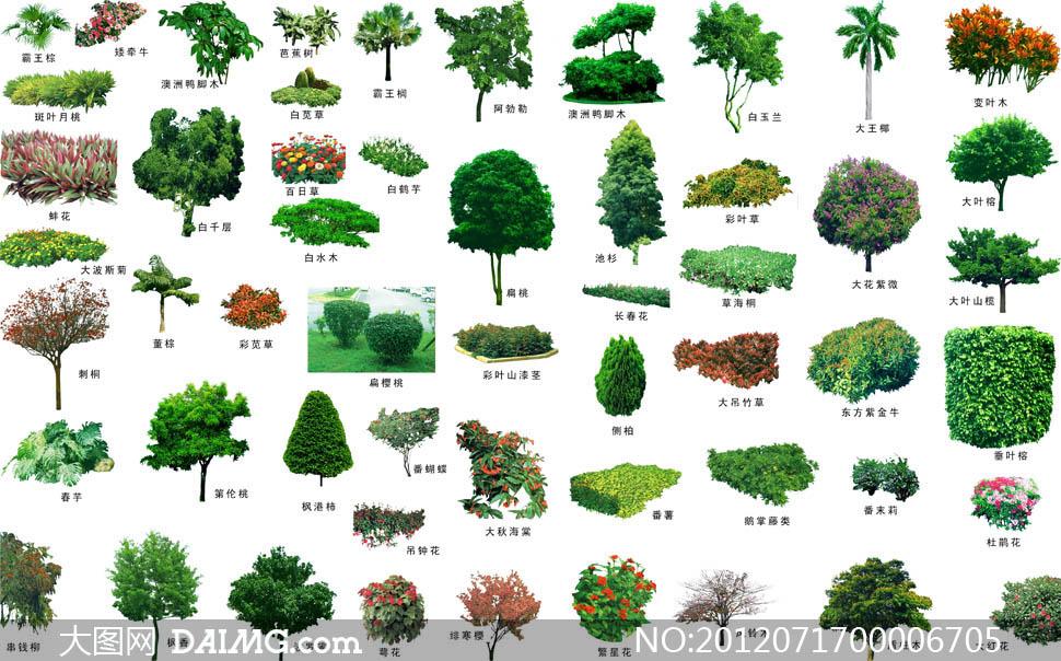 花池景观效果图