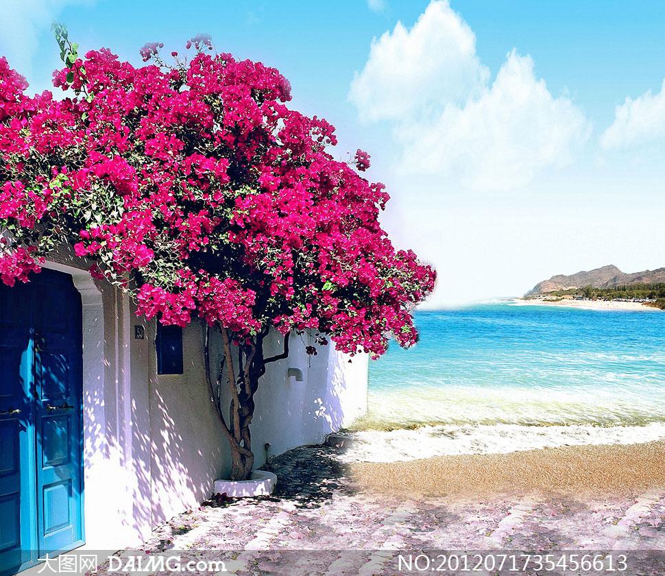 蓝天白云海边小屋影楼摄影背景图片
