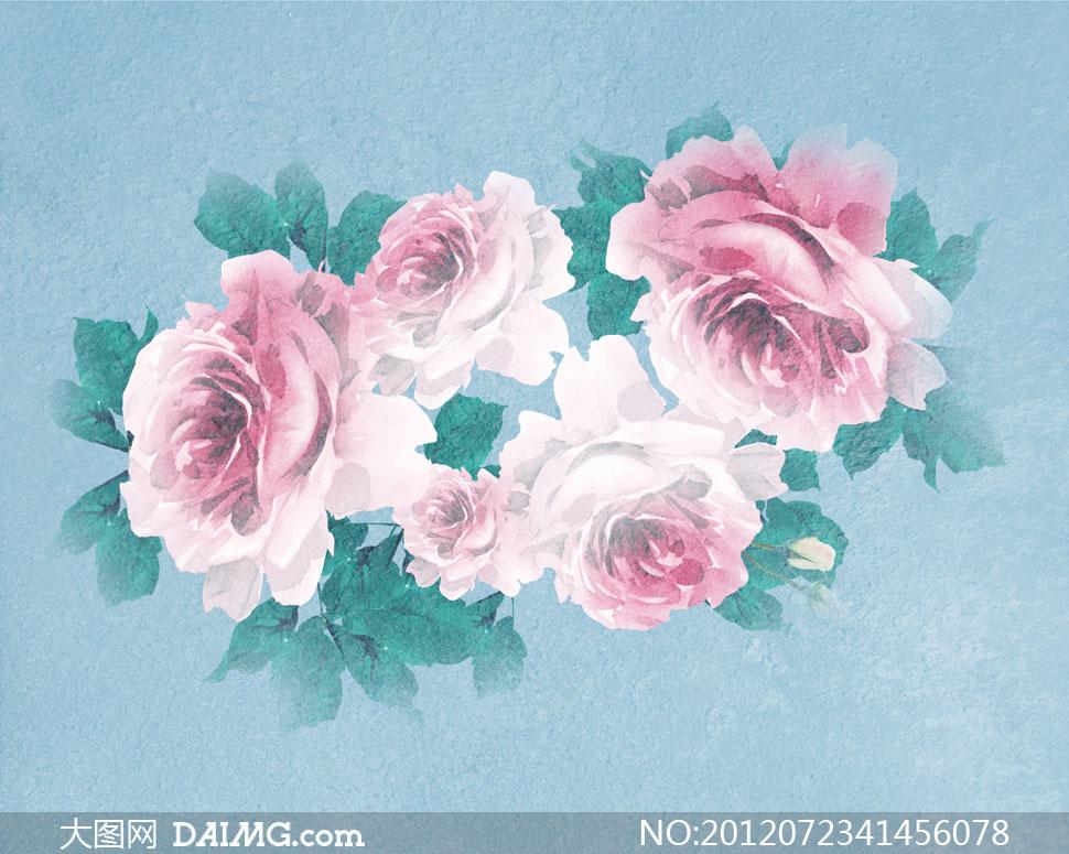 粉红色水粉花朵影楼摄影背景图片