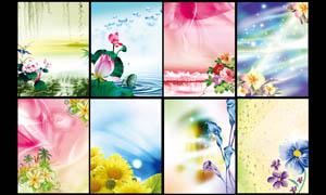 梦幻花朵展板背景PSD分层素材