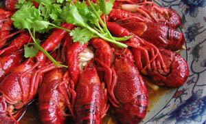 蒜泥香辣小龙虾摄影图片