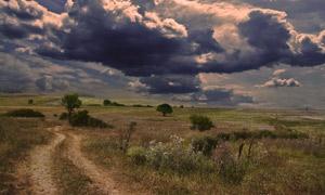 乌云下的田园风光摄影图片