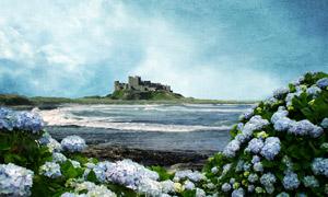 海边城堡和花朵油画设计图片
