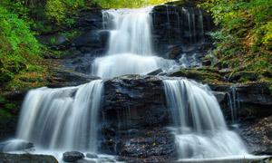 森林中的溪流瀑布高清摄影图片