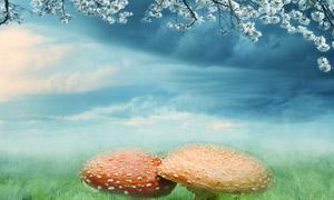 梦幻花枝下的大蘑菇高清设计图片