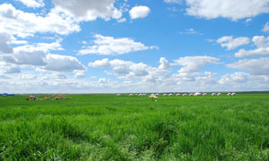 蓝天白云与草原蒙古包摄影高清图片
