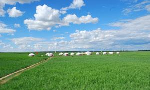 草原上的小路与蒙古包摄影高清图片