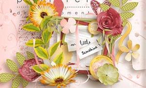 彩色花卉和照片相框等剪贴图片素材