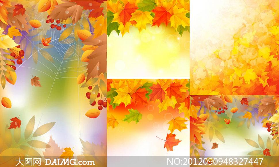 梧桐树叶子秋天自然风景矢量素材