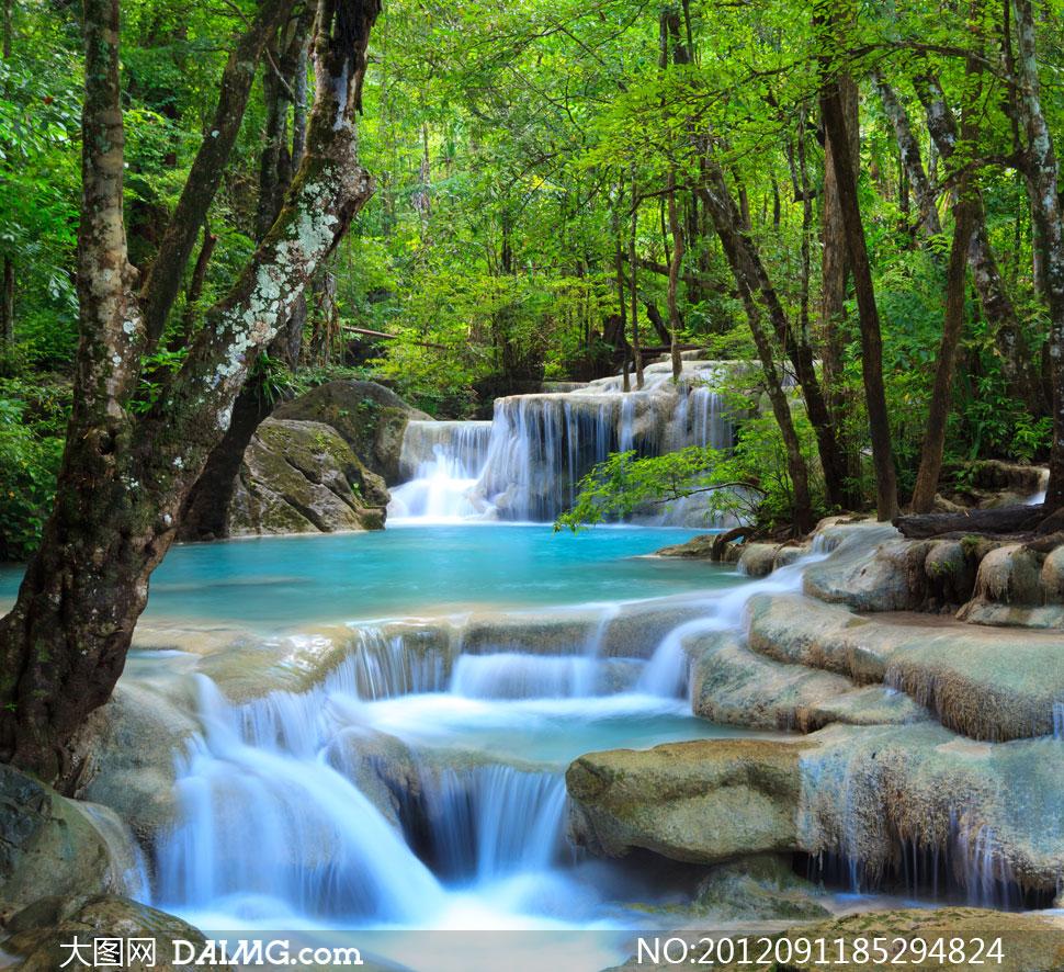 茂密树林里的溪流瀑布摄影高清图片
