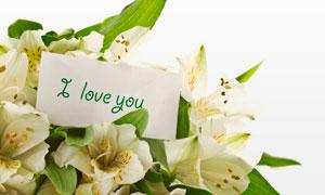 放在百合花束上的卡片摄影高清图片