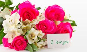 玫瑰花百合花与卡片摄影高清图片