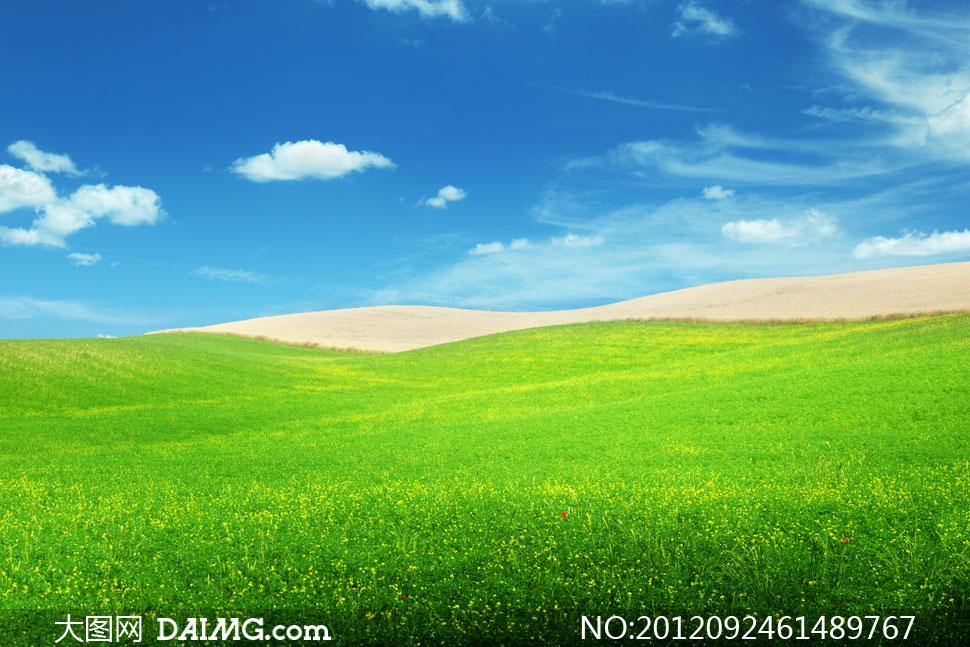 青青草原与不毛之地摄影高清图片
