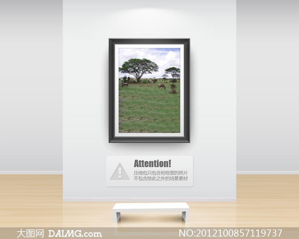 天空白云非洲草原影楼摄影背景图片 - 大图网设