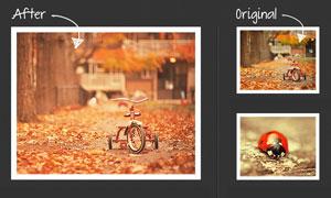 秋季金黄色效果调色动作