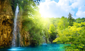 茂盛树木与水潭瀑布摄影高清图片